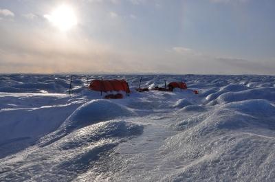 Polar discovery_16