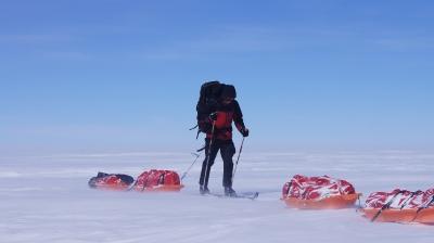 Polar discovery_6