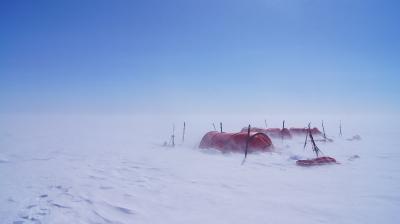 Polar discovery_7