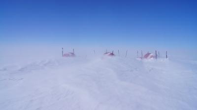 Polar discovery_8